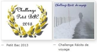 Challenge PetitBac Voyage